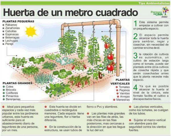 Los Huertos Urbanos: Una Excelente Alternativa de Espacios Verdes en Casa