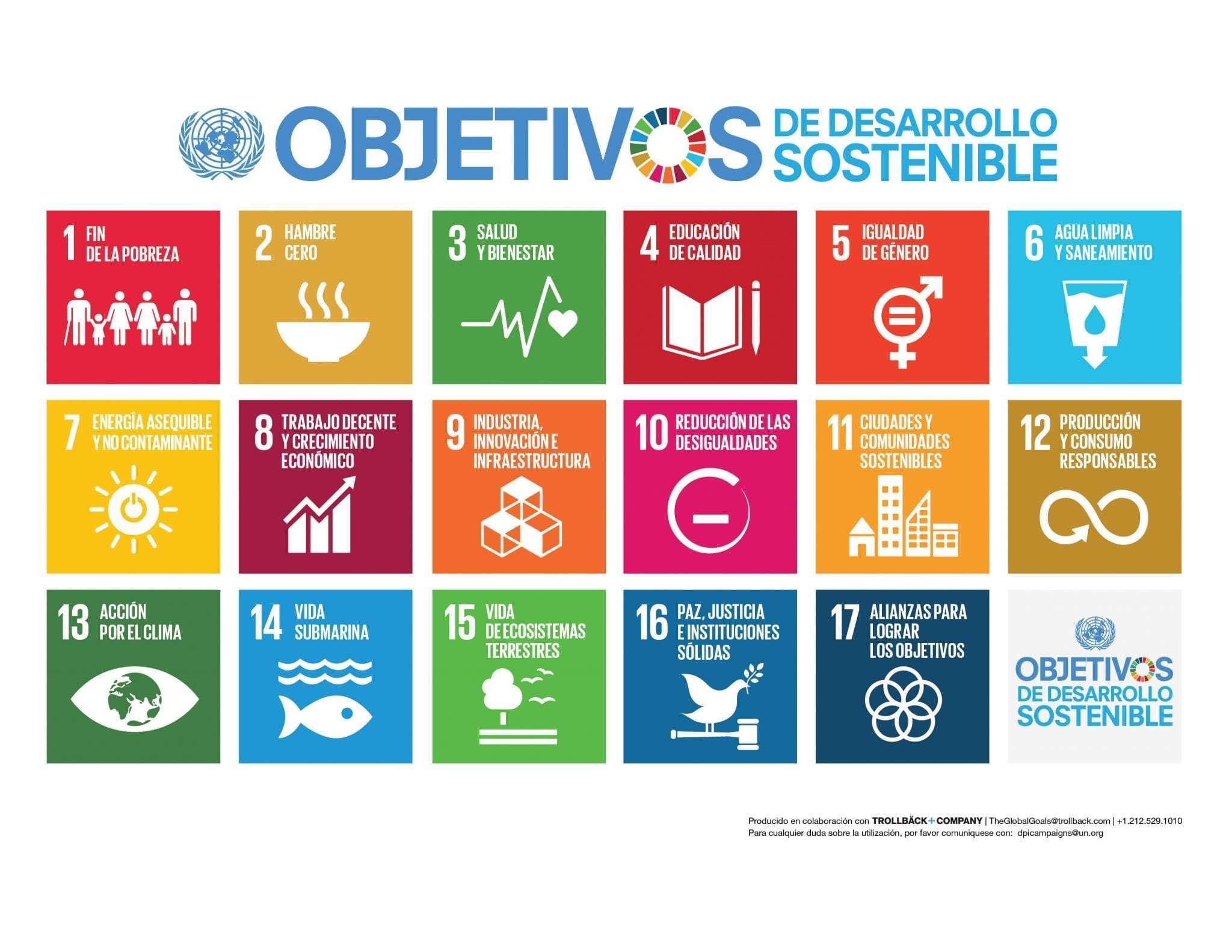 ¿Cuáles son los Objetivos de Desarrollo Sostenible?