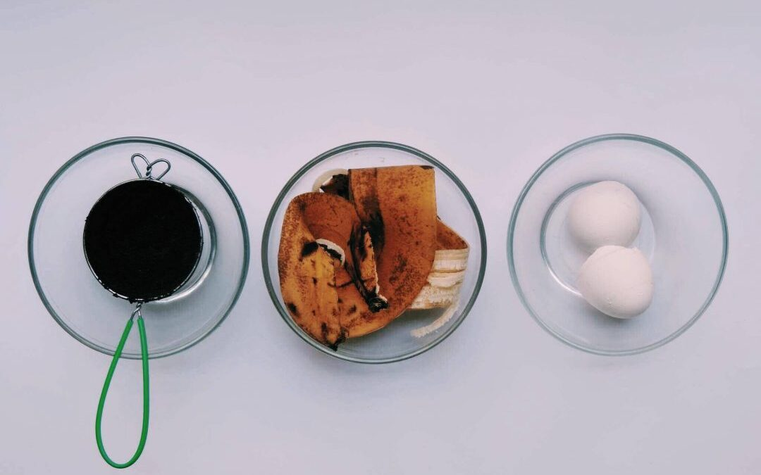 ¿Cómo hacer un Abono Orgánico con Cáscara de Plátano, Cascaron de Huevo y Borra de Café?