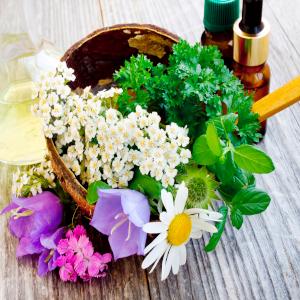 ¿Qué son las esencias florales?